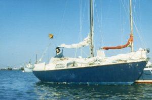 1984 Lady Vyner 7